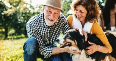 Adding Whole Life Insurance Cash Value As A Volatility Buffer In Retirement